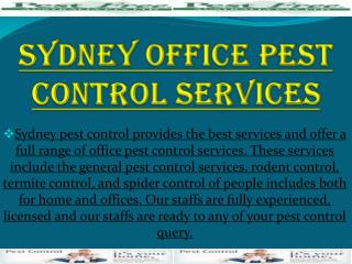 Sydney Offive Pest Control Services