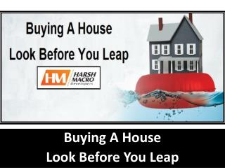 Buying a House - Look Before You leap