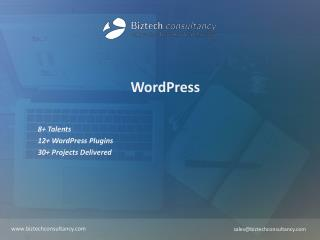 WordPress Brochure - Biztech Consultancy