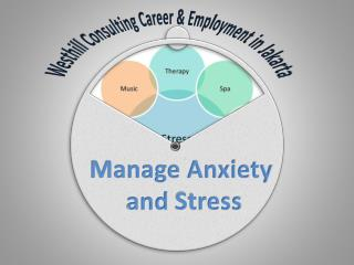 Westhill Consulting Career: Manage Anxiety and Stress