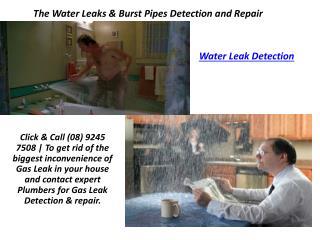 Water Leak Detection   Water Leak Repair