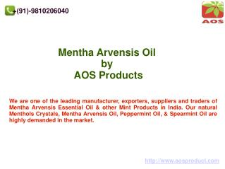 Mentha Arvensis Oil, Mentha Arvensis Oil Essential Products