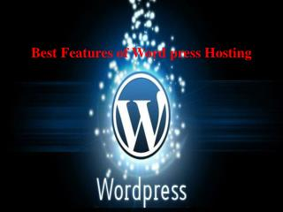 Best Features of Word press Hosting
