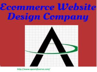 Ecommerce Website Design Company | Apex Info-Serve