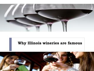 Why Illinois wineries are famous