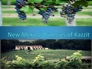 New Mexico Wineries of Kazzit
