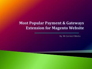 The Most Popular Payment Gateways Extension for Magento