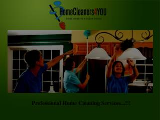 House Cleaner Services