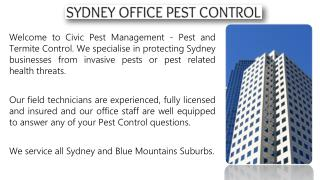 Office Pest Control