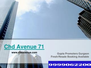 Chd Avenue 71 | Avenue 71 Ready to Move Apartments Gurgaon