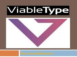 Web Development Company Minneapolis- Viable type
