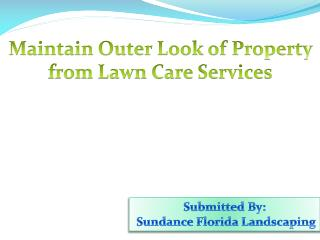 Maintain Outer Look of Property from Lawn Care Services