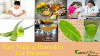 Easy Natural Remedies For Parasites To Give Fast Relief