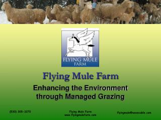 Flying Mule Farm