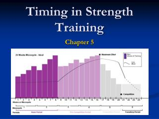 Timing in Strength Training
