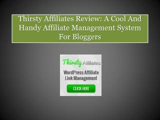 Thirsty Affiliates Wordpress Plugin Review: A Handy Affiliat