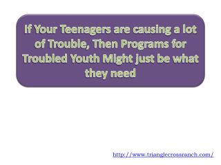 If Your Teenagers are causing a lot of Trouble, Then Program