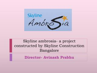Skyline ambrosia- a project constructed by Skyline Construct
