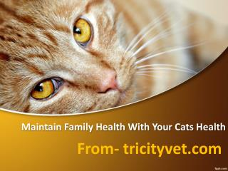 Maintain Family Health Along With Pet Health