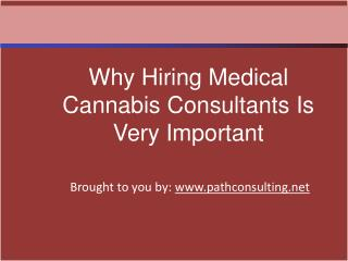 Why Hiring Medical Cannabis Consultants Is Very Important