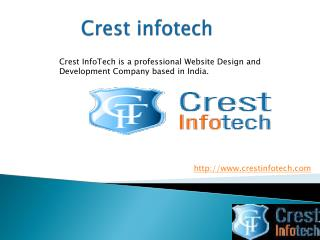 Professional Website Design india