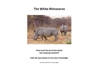 Tunde Folawiyo White Rhino