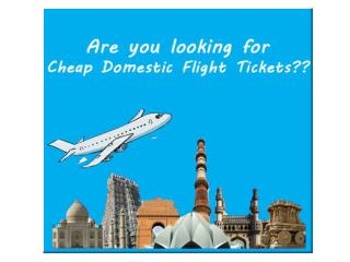 Cheap Flight Options
