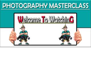 Online Photography Learn - Courses Review