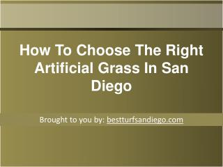 How To Choose The Right Artificial Grass In San Diego