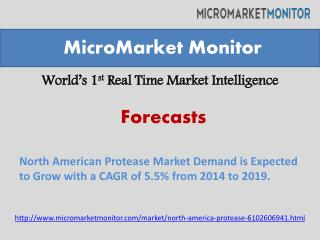 North American Protease Market Demand is Expected to Grow wi