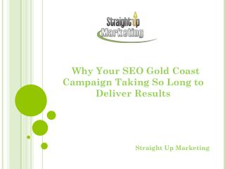 Why Your SEO Gold Coast Campaign Taking So Long to Deliver R