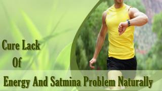 Herbal Supplements to Cure Low Energy and Stamina Problem
