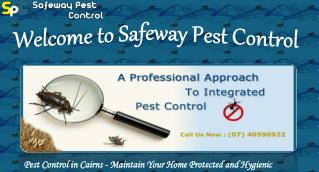 Safeway Pest Control - Pest Control in Cairns