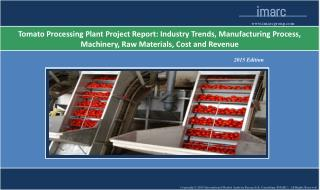 Tomato Processing Plant Project Report