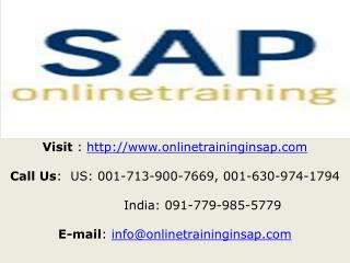 SAP Security Training Course Online and Placement