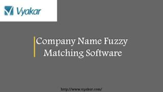 Company Name Fuzzy Matching Software
