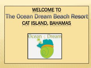 Luxury Hotels in Cat Island