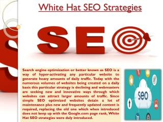 White Hat SEO Company