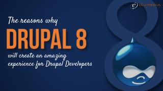 Drupal Developers