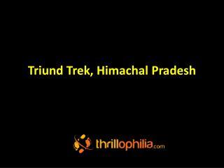 Triund trek, Himachal Pradesh