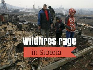 Wildfires rage in Siberia