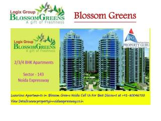 Luxury Apartments in Blossom Greens Noida Extension