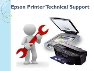 Epson Printer Technical Support 1-800-832-1504