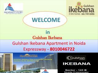Gulshan Ikebana Apartments in Noida Expressway