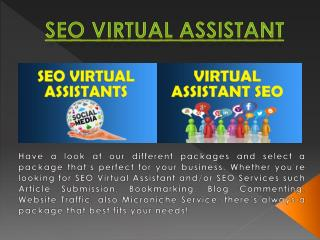 SEO Virtual Assistant India