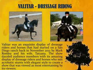VALITAR - DRESSAGE RIDING