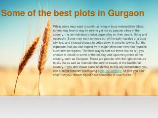 Some of the best plots in Gurgaon