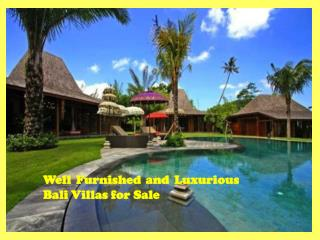 Well Furnished and Luxurious Bali Villas for Sale