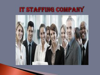 Best Online IT Staffing Campany To Provide Its Services