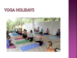 yoga holidays
